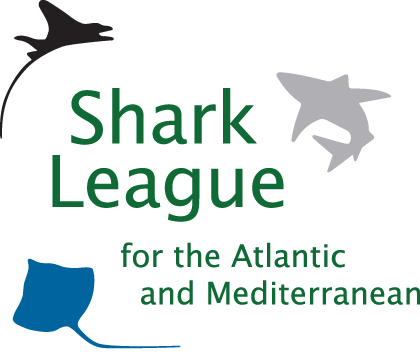Shark League for the Atlantic and Mediterranean
